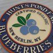 Hunts Pond Blueberry Farm