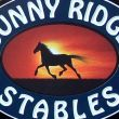 Sunny Ridge Stables: Mount Morris, NY