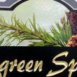 Evergreen Springs: Ellicottsburg, Pennsylvania
