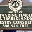 Wood Wise Forestry: Pittsford, NY