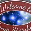 Camp Stardust: